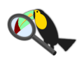 Little Toucan Through Magnifying Glass